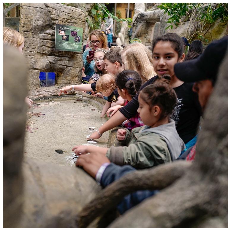 Adeline-first-visit-to-the-aquarium-3