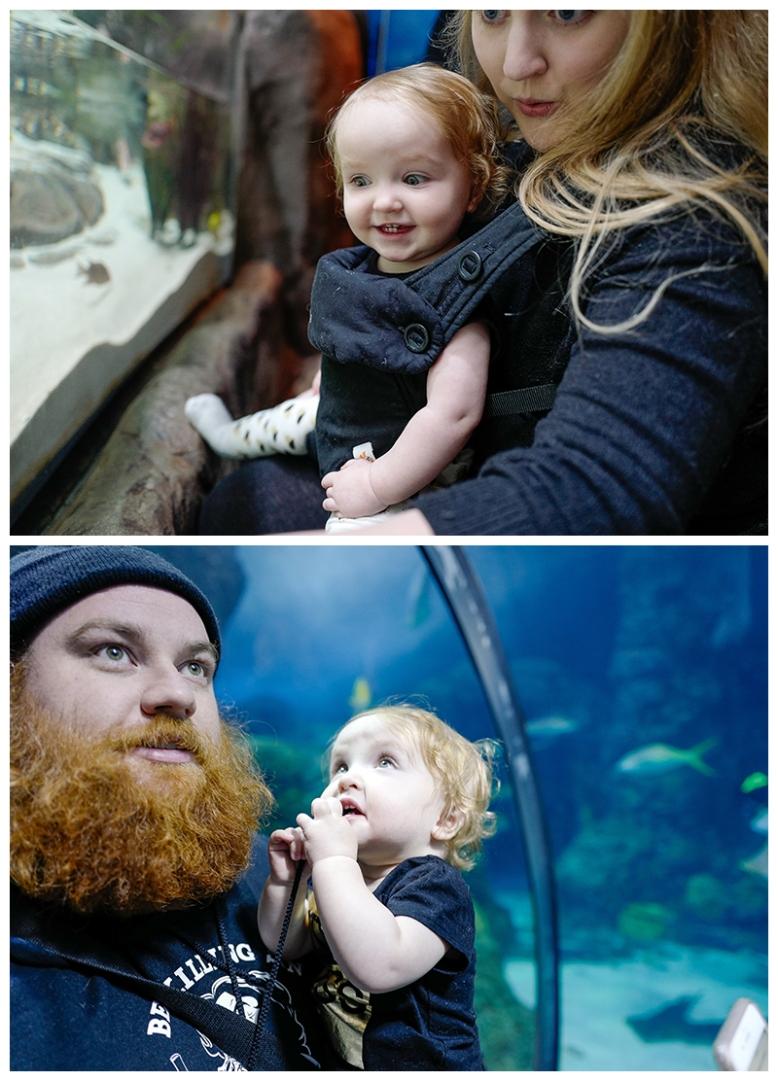 Adeline-first-visit-to-the-aquarium