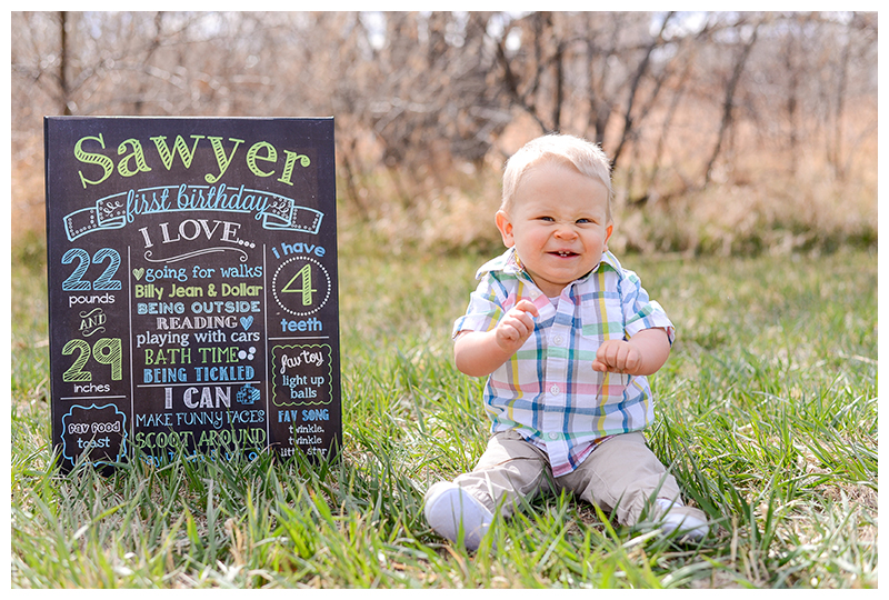 Happy-First-Birthday-Sawyer-4